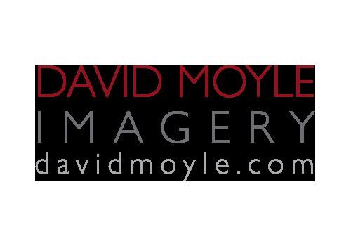 David Moyle Imagery Logo